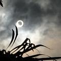 写真: 日蝕