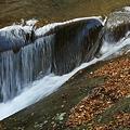 Photos: ウナギ床の流れ1